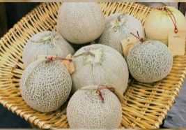 Can-Babies-Have-Cantaloupe-Benefits-And-Precautions-To-Take-910x1024.jpg
